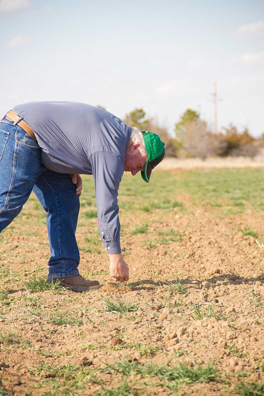 Crusader photo/Maria Lara David Coltrain, sustainable agriculture program specialist, checks the gorund to see if it's dry enough to start planting 'cool season' crops in the next couple of weeks.