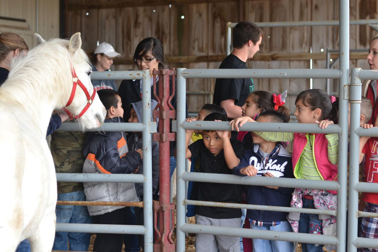 Farm Education Day upskill children at SCCC/ATS