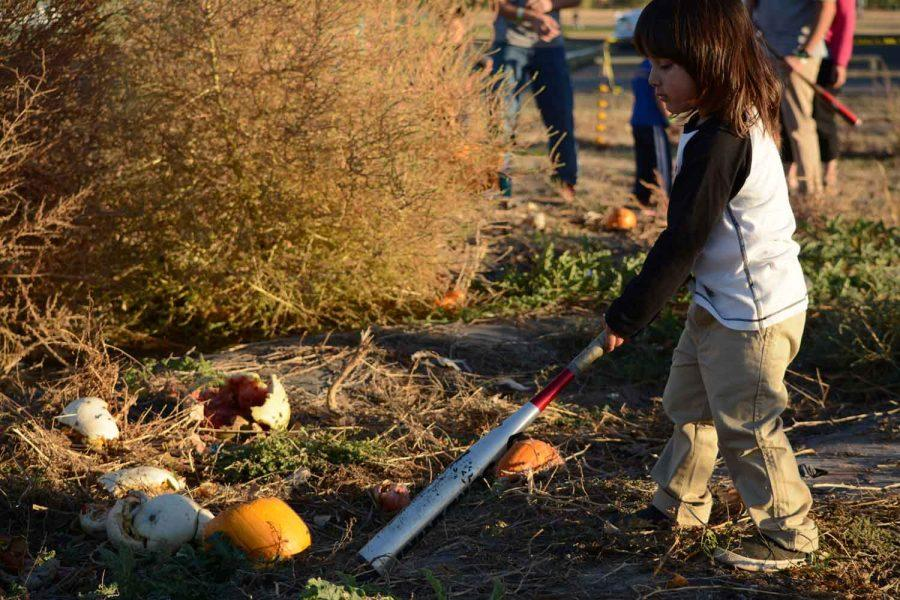 oshua Michael Raes smashes a pumpkin at the Pumpkin Olympics. This event was held October 18th.