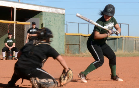 Photo Essay: Softball Preview
