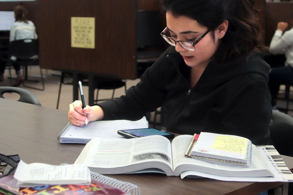 Freshman education major, Lucero Loredo, works on a history assignment.