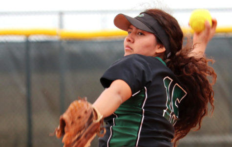 Softball loses first conference double header