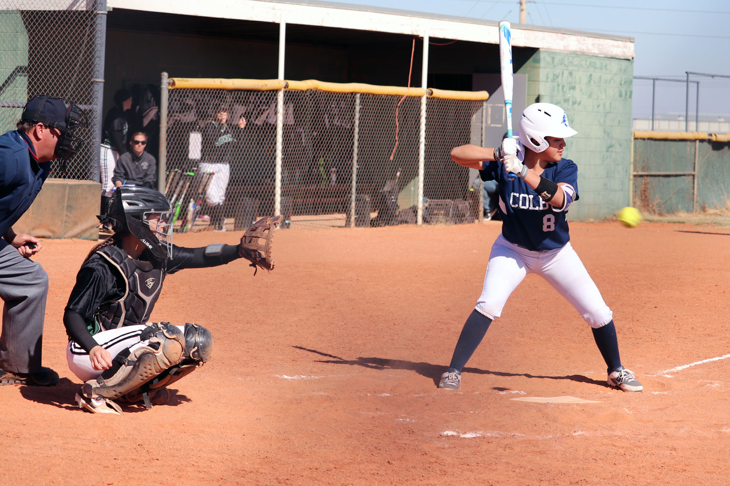 The Lady Saints softball team ended their season after falling in the Region VI Championship game to the Butler Grizzlies by a score of 18-0. (File Photo)