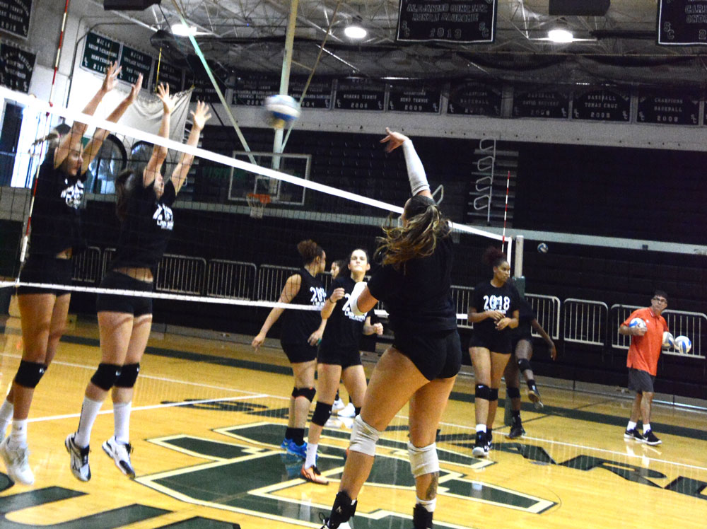With a new coaching stuff and 10 new freshman, the Lady Saints Volleyball team looks to have another successful season with a possible National Tournament appearance.