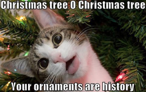 10 memes to get you through the holidays