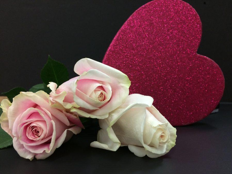 Single students celebrate Valentine's Day
