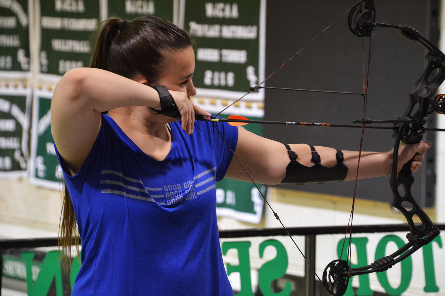 Archery is one of the various