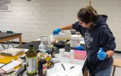 Chemistry students design, create soaps