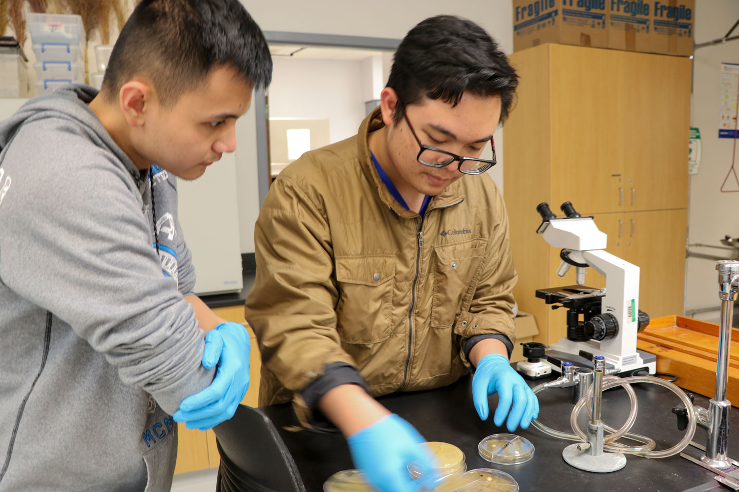 Sophomore pre-pharmacy majors, Huy Cam and Karlo Flores take a look at the project they have been working on. Cam and Flores test a bacteria and an anti-biotic that theyve produced in their lab together to see whether or not the bacteria is resistant to the anti-biotic.