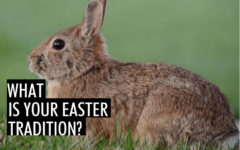 How much do we know about Easter?