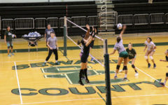 Lady Saints rise to number one in recent polls