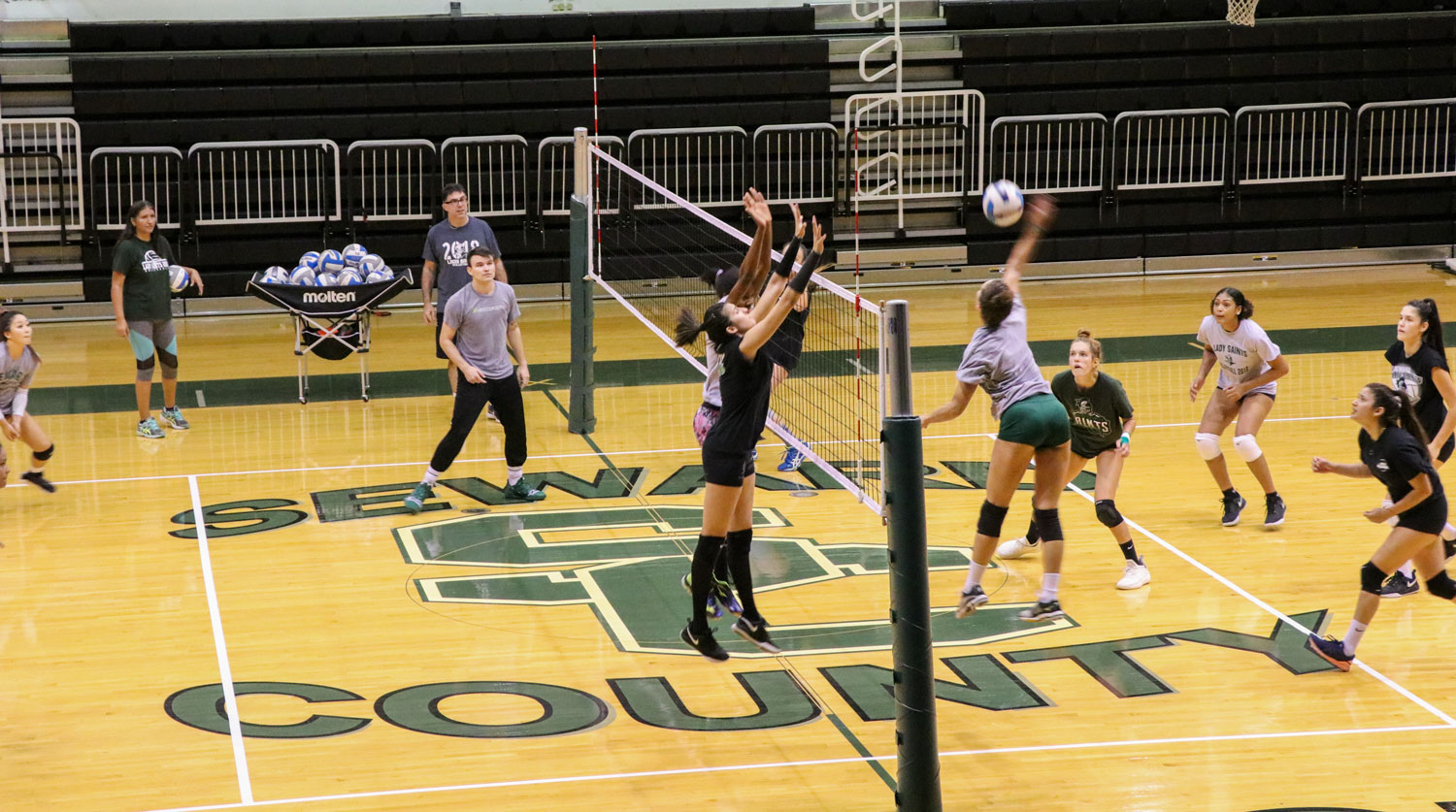 The Saints volleyball team scrimmage against each other in the greenhouse on Sept. 6. The Saints volleyball team is ranked No. 1 in the nation, and hasn't dropped a set in any of their games.