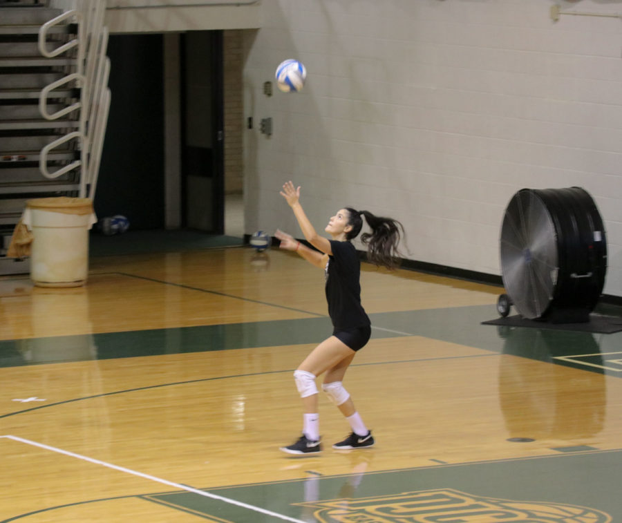 Livia De Pra gets ready to serve during a scrimmage in the greenhouse on Friday, Sept. 6. She is a freshman outside hitter for the Saints volleyball team from Sao Paulo, Brazil.