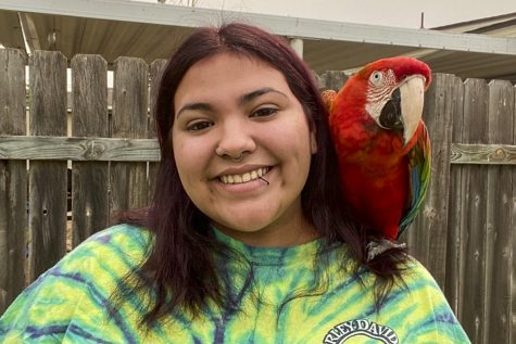 "Breighanna Medina poses with her flame macaw. She considers this bird her ""therapy"" pet. It helps to soothe and calm her down. Medina has many pet birds that she cares for with her family."
