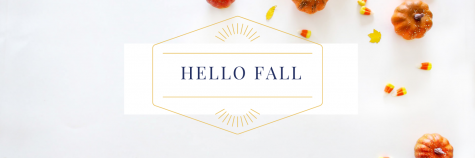 Fall in love with seasonal decor