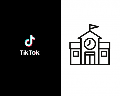Could TikTok be teaching us more than school?
