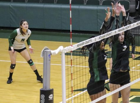 Volleyball comes back from 2-0 deficit against Grizzlies to win