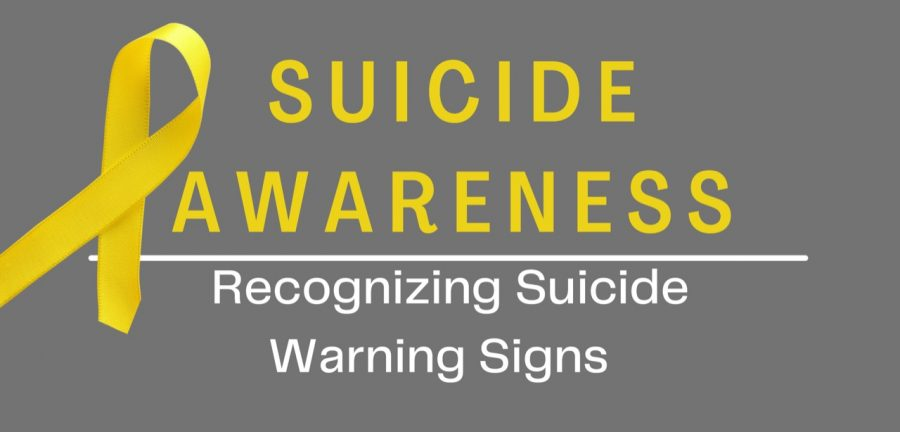 Suicide warning signs