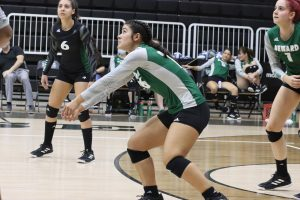 Logan Dodge, Liberal freshman, gets ready to defend the ball coming from the Lady Rattlers. The Lady Saint is a setter and defensive specialist.