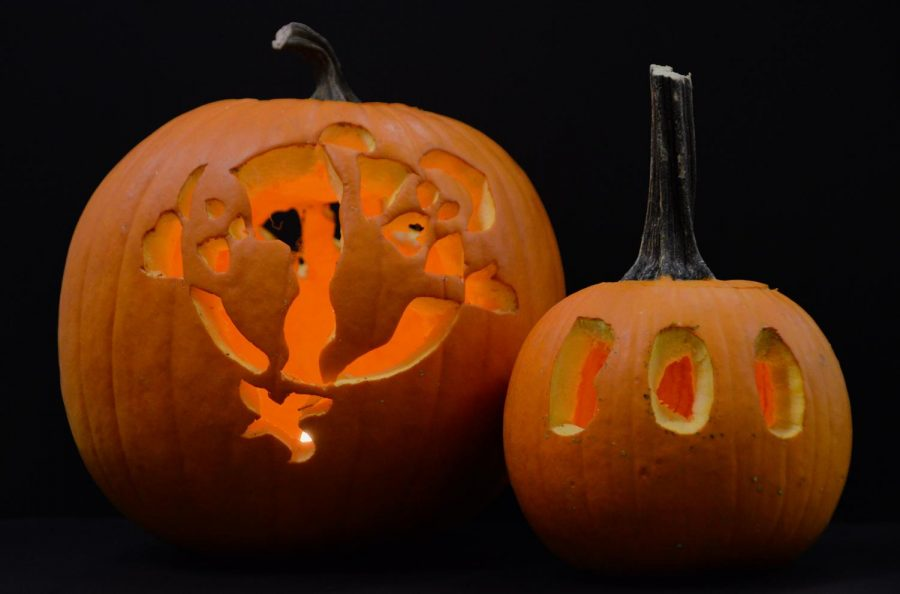 One of the most popular activity is using pumpkins to carve them. After carving pumpkins, many people put a light in their pumpkin to make it look even better!